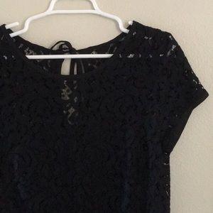 Loft Black and Navy Lace Dress